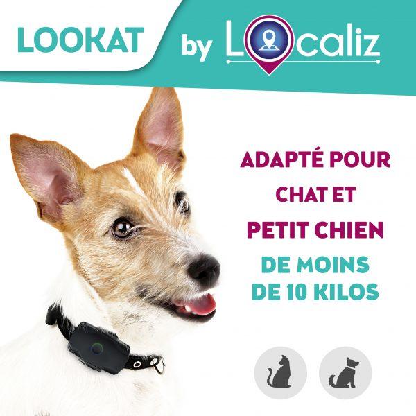 Localiz Lookat traceur GPS chat petit chien