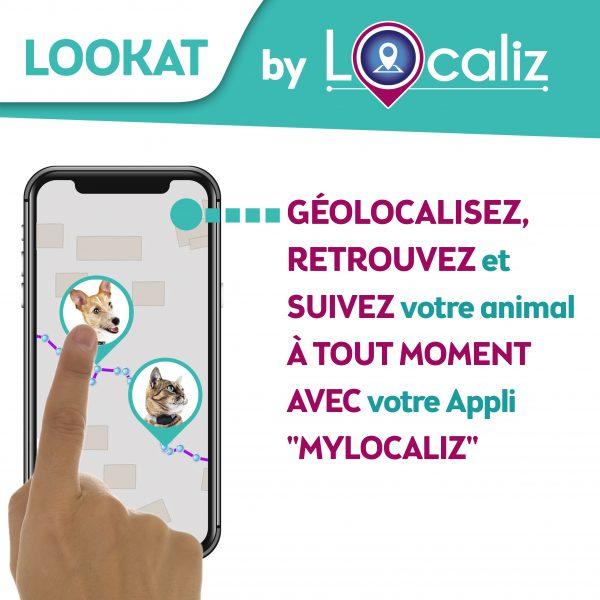 Localiz Lookat traceur GPS chat petit chien géolocalisation