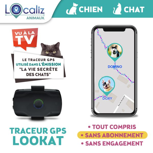 Traceur GPS CHAT chien TF1