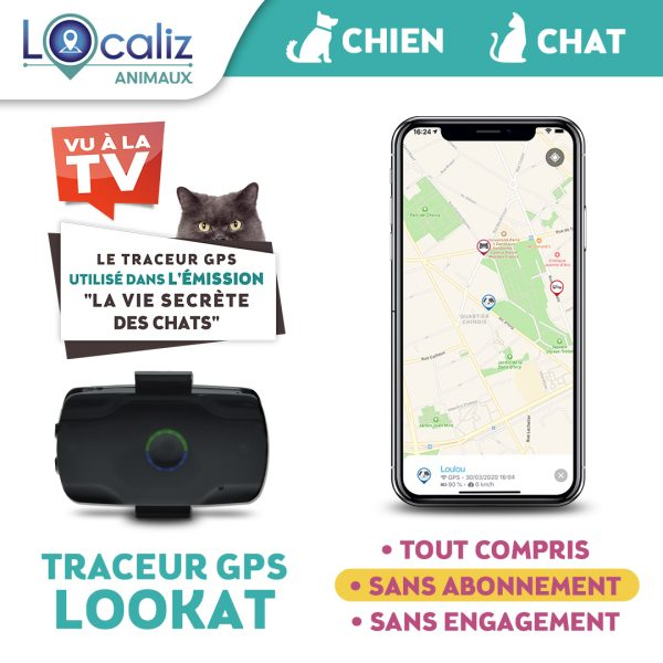 Traceur-GPS-LOOKAT-chat-chien-TF1