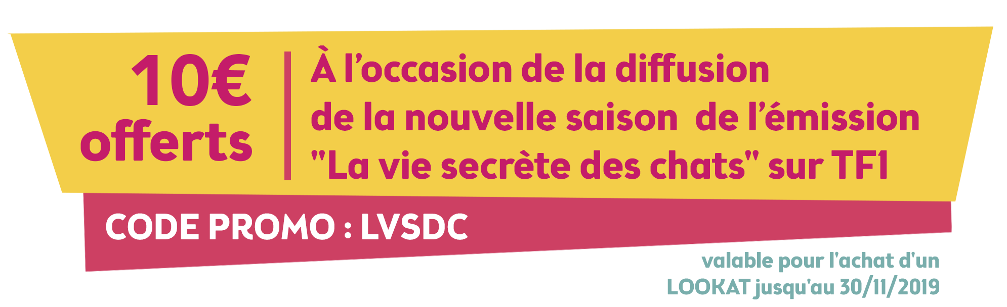 Localiz traceur gps chat LVSDC TF1