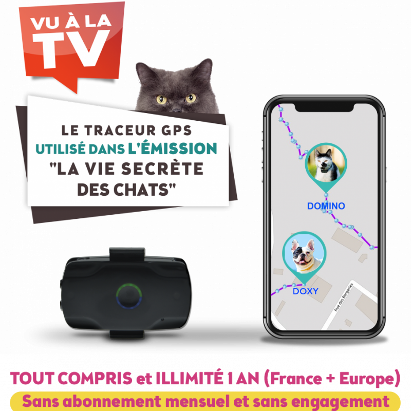 Localiz traceur gps chat La vie secrète des chats TF1