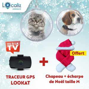 Traceur GPS LOOKAT chat chien