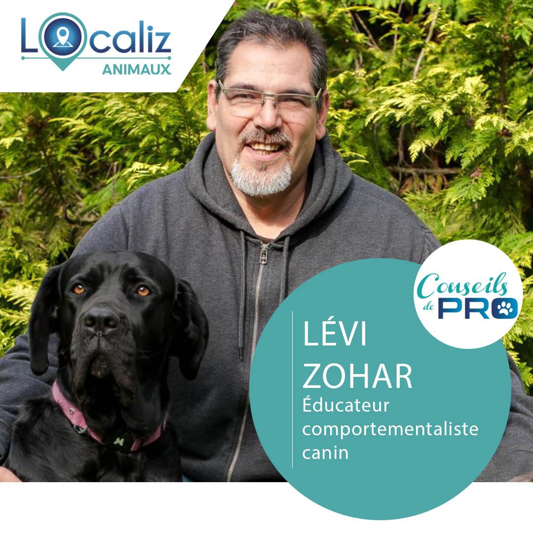 Levi Zohar Localiz éducateur canin chien
